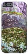 Misty Woodland Scenic IPhone Case by Thomas R Fletcher