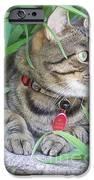 Monty In The Garden IPhone Case by Jolanta Anna Karolska