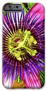 Passion Flower IPhone Case by Mariola Bitner