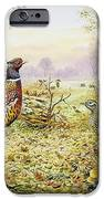 Pheasants In Woodland IPhone Case by Carl Donner