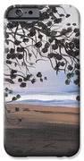 Pools Beach IPhone Case by Sarah Lynch