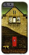 Postal Service IPhone Case by Mal Bray