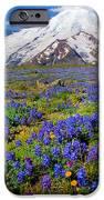Rainier Lupines IPhone Case by Inge Johnsson
