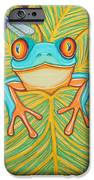 Red Eyed Tree Frog And Dragonfly IPhone Case by Nick Gustafson