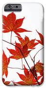 Remembering Yoshino IPhone Case by Sophie De Roumanie