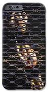 Rowing Through The Grate IPhone Case by David Lee Thompson