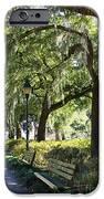 Savannah Benches IPhone Case by Carol Groenen