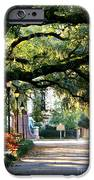 Savannah Park Sidewalk IPhone Case by Carol Groenen