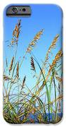 Sea Oats And Sea IPhone Case by Thomas R Fletcher