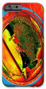Sidelight IPhone Case by Wendy J St Christopher