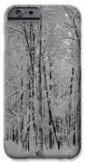 Silence Of Winter IPhone Case by Gabriela Insuratelu