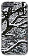 Snowfall And Tree IPhone Case by Elena Elisseeva