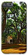 Southern Lane IPhone Case by Steve Harrington