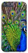 Strut IPhone 6s Case by Angelina Vick