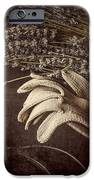 Summer's Grace IPhone Case by Amy Weiss