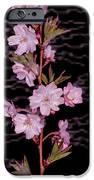 Sweet Smell Of Spring IPhone Case by Debra     Vatalaro