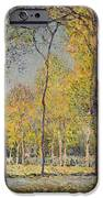 The Bois De Boulogne IPhone Case by Alfred Sisley
