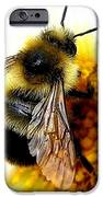 The Buzz IPhone Case by Will Borden