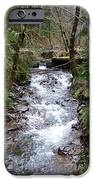The Creek IPhone Case by Laurie Kidd