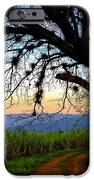 The Road Less Traveled IPhone Case by Skip Hunt