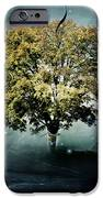 Tree Of Hope IPhone Case by Mary Hood