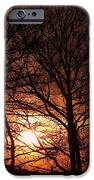 Trees At Sunset IPhone Case by Michal Boubin