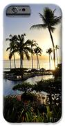 Tropical Dream IPhone Case by Rosy Kueng