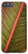 Variegated Ti-leaf 2 IPhone Case by Ron Dahlquist - Printscapes