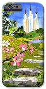 Washington Dc Temple IPhone Case by Robin Birrell