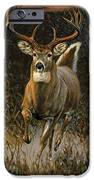Whitetail Deer IPhone Case by JQ Licensing