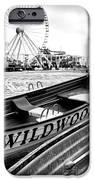 Wildwood Black IPhone Case by John Rizzuto