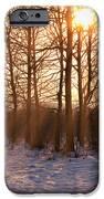 Winter Break IPhone Case by Wim Lanclus