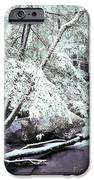 Winter In Shenandoah IPhone Case by Thomas R Fletcher