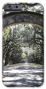 Wormsloe Plantation Gate IPhone Case by Carol Groenen