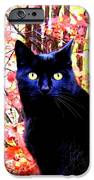 Ziggy IPhone Case by Will Borden