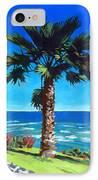 Fan Palm - Diamond Head IPhone Case by Douglas Simonson