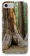 Mariposa Grove IPhone Case by Bill Gallagher