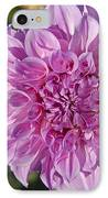 Pink Dahlia IPhone Case by Peter French