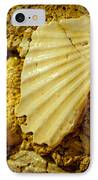 Seashell In Stone IPhone Case by Raimond Klavins