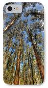 Dandenong Forest IPhone Case by Colin Woods