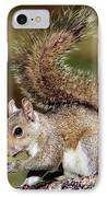 Eastern Gray Squirrel IPhone Case by Millard H. Sharp