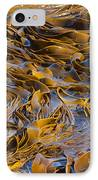 Bull Kelp Blades On Surface Background Texture IPhone Case by Stephan Pietzko
