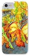 After The Harvest IPhone Case by Karen Ilari
