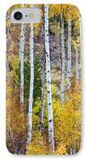 Aspen Tree Magic IPhone Case by James BO  Insogna