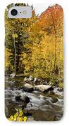 Aspens At Bishop Creek IPhone Case by Cat Connor