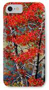 Autumn Reflections IPhone Case by Janine Riley