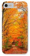 Autumn Tunnel Of Trees IPhone Case by Terri Gostola