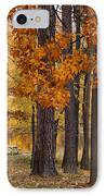 Autumn View IPhone Case by Sandy Keeton