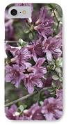 Azalea IPhone Case by Frank Tschakert