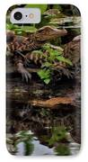 Baby Alligators Reflection IPhone Case by Dan Sproul